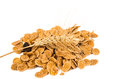 Corn flakes isolated Stock Images