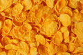 Corn flakes macro of can be used as a background Royalty Free Stock Images