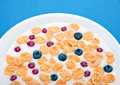 Corn flakes in milk with berries Stock Photos