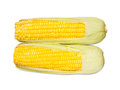 Corn grain Stock Photos