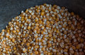 Corn grain in the old cauldron Royalty Free Stock Photo