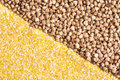 Corn grits and buckwheat background diagonal split Royalty Free Stock Photography