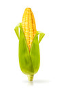 Corn isolated on a white background Stock Photo