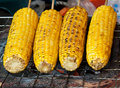 Corn  roast Royalty Free Stock Photos