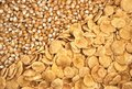 Corn seeds and corn-flakes Royalty Free Stock Image