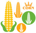 Corn set isolated objects on white background vector illustration eps Stock Photo