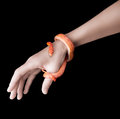 Corn snake and woman hand Stock Image