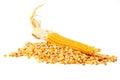 Corn and tinned corn mais food Royalty Free Stock Photo