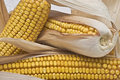 Corncobs I Royalty Free Stock Images
