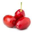 Cornel berries three on white background Royalty Free Stock Images