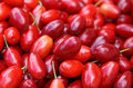 Cornelian cherries background Royalty Free Stock Photo