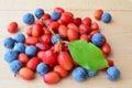 Cornelian cherries and sloes Royalty Free Stock Photo