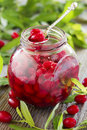 Cornelian cherry jam Royalty Free Stock Photo