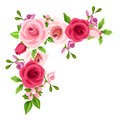 Corner background with red and pink roses. Vector illustration.
