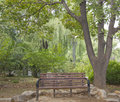 A corner of the park morning in ji nan quancheng Royalty Free Stock Images