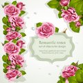 Corners and repeating a garland for design from pink romantic roses Royalty Free Stock Photo