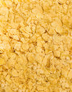Cornflakes Background Royalty Free Stock Image