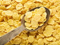 Cornflakes in the spoon. Royalty Free Stock Photo
