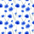 Cornflower pattern Royalty Free Stock Photos