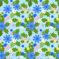 Cornflower seamless summer pattern Stock Photos