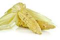 Corns  on the white background Royalty Free Stock Photo