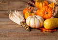 Cornucopia of Pumpkins, Gourds, and Dried Corn Royalty Free Stock Images