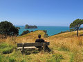 Coromandel peninsula wonderful view at north island of new zealand Royalty Free Stock Images