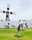 CORRALEJO, SPAIN - APRIL 28: Horse show Royalty Free Stock Image