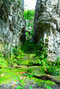 Corridor between the rock surface with damp in forest thailand Stock Photography