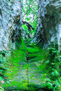 Corridor between the rock surface with damp in forest thailand Stock Photos