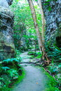 Corridor between the rock surface with damp in forest thailand Royalty Free Stock Photography