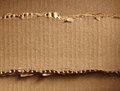 Corrugated cardboard as a background Stock Images
