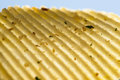 Corrugated potato chip Royalty Free Stock Photo