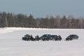 Cortege motorcade accompanied by a motorcycles escort winter Stock Photos