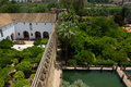 Cortyards of  Alcazar of Cordoba, Spain Royalty Free Stock Photo