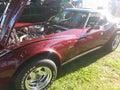 Corvette stingray classic car Stock Image