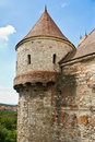 Corvins Castle Stock Photography