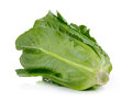 Cos Lettuce Isolated On White ...