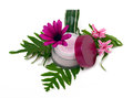 Cosmetic pink cream with herbs and flowers Royalty Free Stock Photo