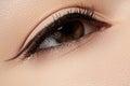Cosmetics. Macro of beauty eye with eyeliner make-up