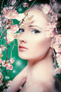 Cosmetics portrait of a beautiful girl standing among the branches of cherry blossoms spring Stock Photos