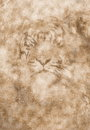 Cosmic tiger face on abstract structured background with sepia effect.