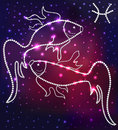 Cosmos fish constellation of the stars and gems illustration Stock Photos