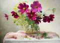 Photo : Cosmos flowers wallpaperclassic poppy herbs