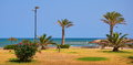 Costa blanca landscape with the mediterranean sea the beach and the palm trees on the in valencia Royalty Free Stock Photo