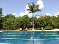 Costa Rica Pool Stock Photography