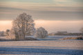 Cotswolds winters morning hoar frost on farmland near chipping campden gloucestershire england Royalty Free Stock Images