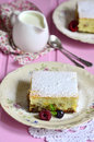 Cottage cheese casserole with dried fruits on a plate Stock Images