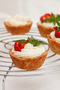 Cottage cheese cream tarts Royalty Free Stock Images