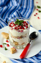 Cottage cheese dessert with biscuits and grenades Stock Images